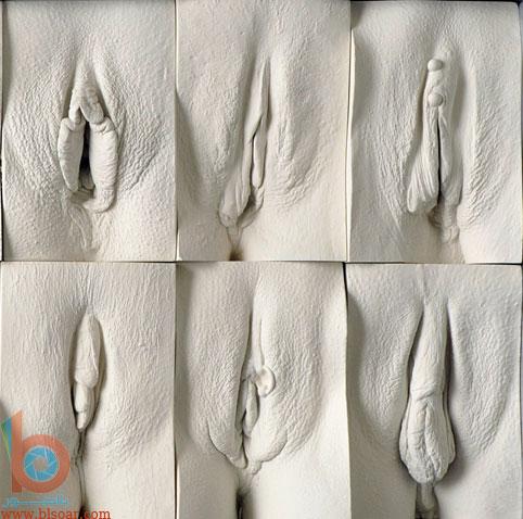 صور انواع الفرج عند النساء وجه الجسم