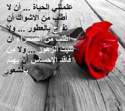 بالصور صور رمنسيه روعه مع عبارات حب تجنن 20160814 362