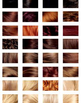 صور كتالوج اندريا لصبغة الشعر