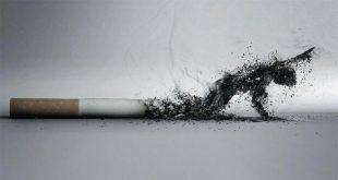 صورة شعر عن التدخين والحب
