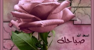 صور صباح الورد والياسمين صباح يسعد ويفرح الغالين