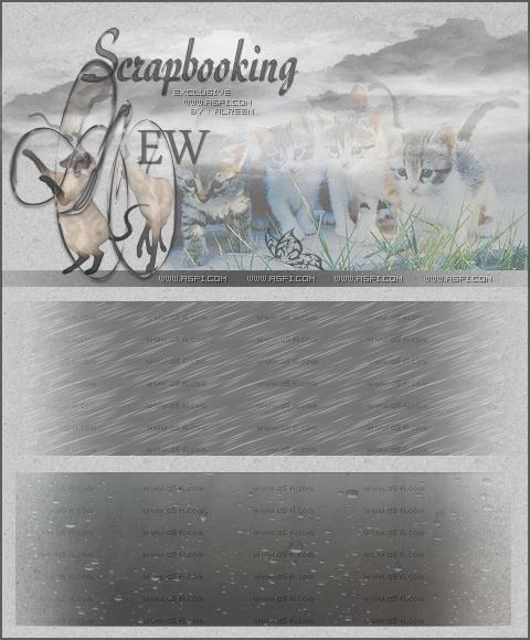 صور مطر بصيغة psd