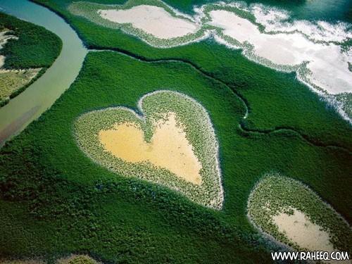 بالصور جزيرة الحب   جميلة جدا 20160908 1569