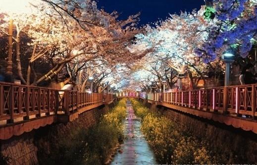 بالصور مناظر كوريا الطبيعية 20160908 2340