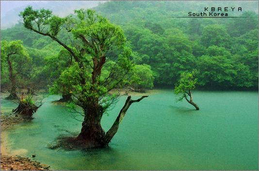 بالصور مناظر كوريا الطبيعية 20160908 381