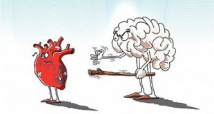هل من الافضل اتباع القلب ام العقل