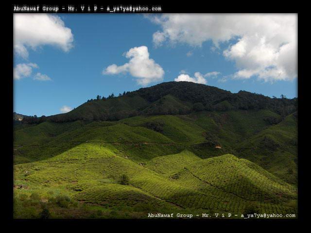 بالصور اجمل صور المناظر الطبيعية ف مالزيا 20160909 147