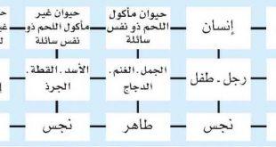 بالصور المنى طاهر ام نجس 20160909 3273 1 310x165