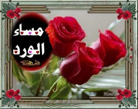 صور مسا الورد
