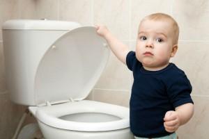 صور الحمام ترغيب الطفل