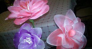 صور الورد بالجوارب