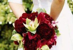 صور نصائح لشراء مكياج جهاز العروسه