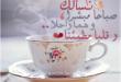 صور رمزيات رمضانية