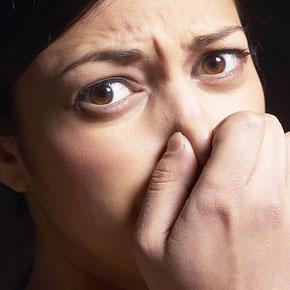 صورة امراض المهبل بالصور