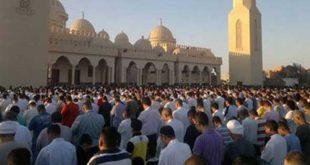 بالصور فتوى صلاة العيد سنة مؤكدة ولا فرق بين ادائها فى المسجد او الخلاء 20160913 2790 1 310x165