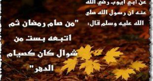 نسيان نية القضاء
