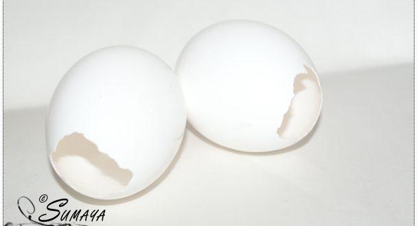 صور اعمال يدوية من قشور البيض