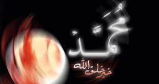 صور من هى اخر من توفى من زوجات الرسول صلى الله عليه و سلم؟؟