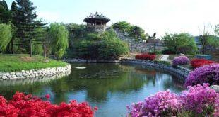 صور اجمل صور المناظر الطبيعية في كوريا