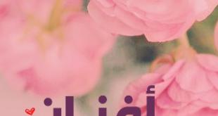 صور معنى اسم افنان