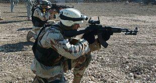 صور الدولمة العراقية واهميتها فى باقى البلاد