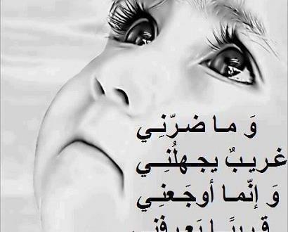 بالصور اقوى شعر عتاب الصديق 20160917 4504 1 410x330