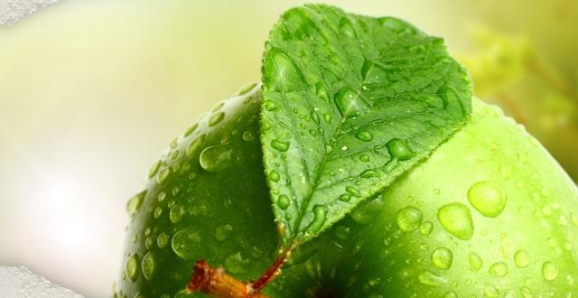 صور التفاح الاخضر للتنحيف