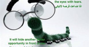 بالصور امثال وحكم انجليزية مترجمة للعربية 20160918 3140 1 310x165