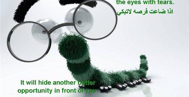 صور امثال وحكم انجليزية مترجمة للعربية
