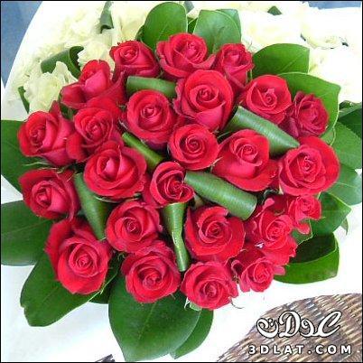 صور احلى صور لبوكيهات الورد
