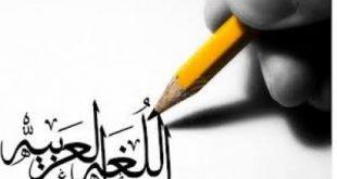 بالصور الطرق الابداعية لتعليم اللغة العربية للناشئة 20160919 115 1 310x165