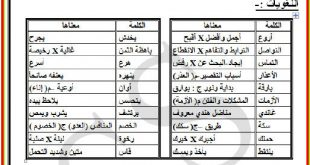 صورة مذكرة درس شرح نص عربية
