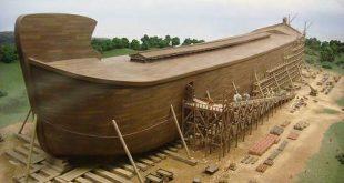 صور قوم سيدنا نوح