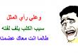بالصور امثال مصرية بالصور 20160919 255 1 110x75