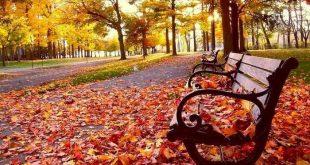لقاء الخريف