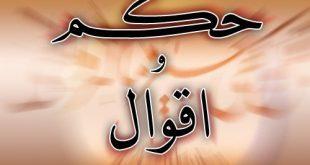 صور امثال وحكم عربية وشرحها