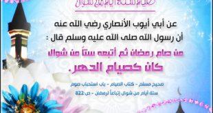 هل يجوز اصوم القضاء بدون نيه