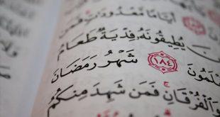 صور ماحكم ماحكم المداعبه في نهار رمضان وحدث انزال
