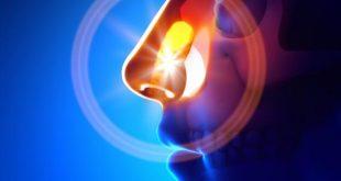 بالصور علاج حساسية الجيوب الانفية 20160920 2979 1 310x165