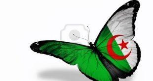 صور السكن العدل في الجزائر