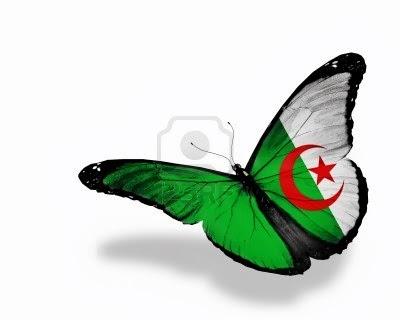 صورة السكن العدل في الجزائر