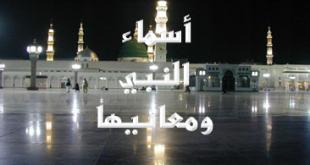 صور اسماء النبي ومعانيها
