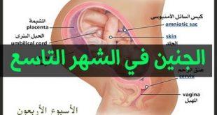 صور اعراض الحمل الشهر التاسع
