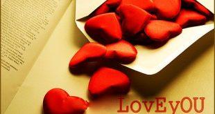 بالصور رواية قلوب تجرعت الحب كاملة 20160921 864 1 310x165
