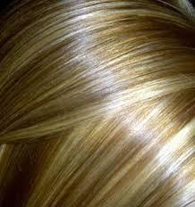 صور كتالوج صبغات الشعر