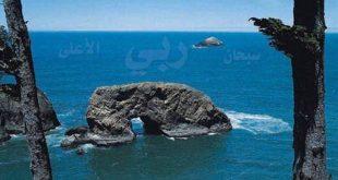 بالصور صور تدل على عظمة الله 20160927 518 1 310x165