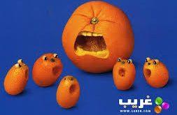 صور صور فواكه بتصميمات غريبة فاكهة اشكال غريبة