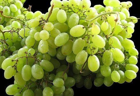 صور فوائد العنب الاخضر