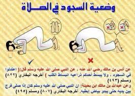 صور الوضعية الصحيحة للصلاة