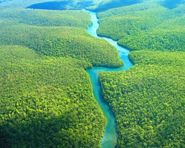 صور صور نهر الامازون